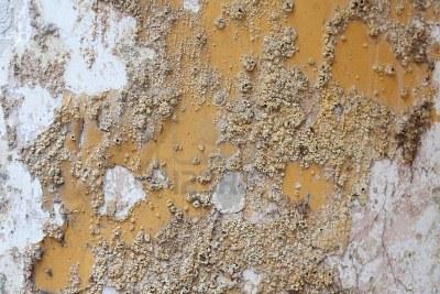 Eflorescéncia. Salitre nas paredes